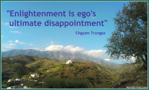 ego's disappointment