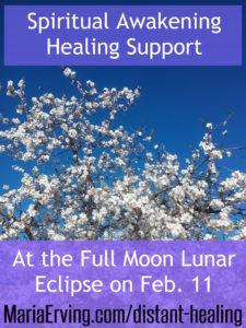 spiritual awakening healing support