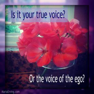 ego voice