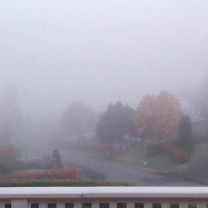 fog will clear