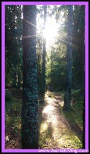 true path
