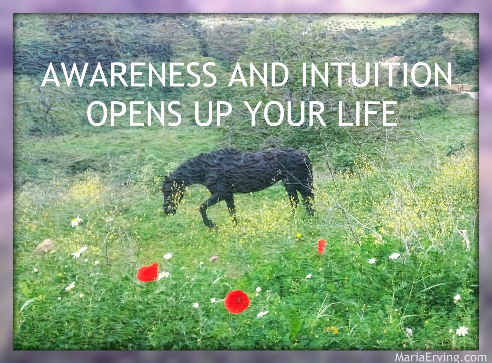 Awareness and intuition opens up your life