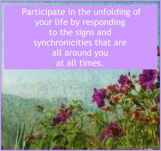 Synchronicity quote by Maria Erving