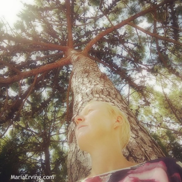 Sitting under a tree meditating