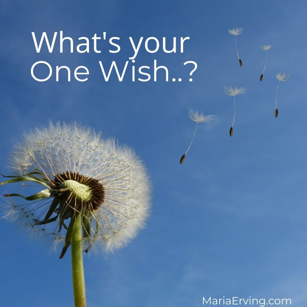 What's your one wish?