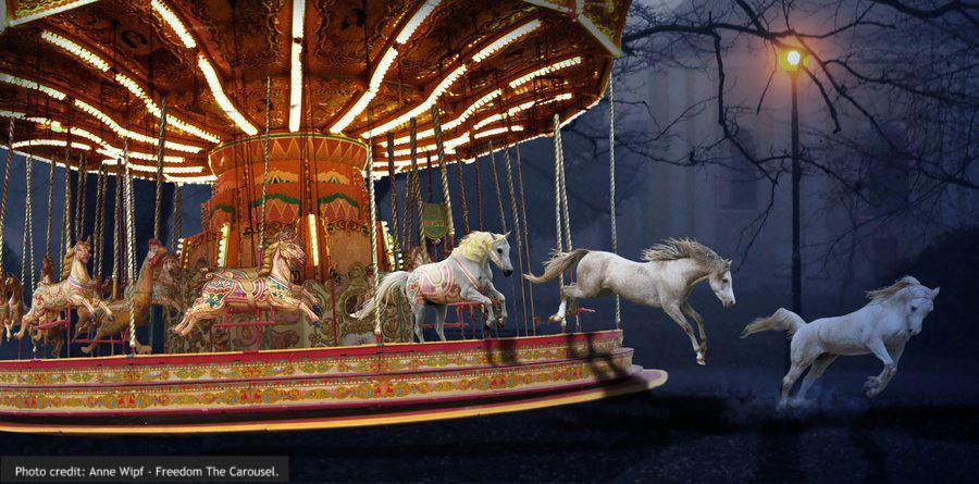 Anne Wipf - Freedom The Carousel