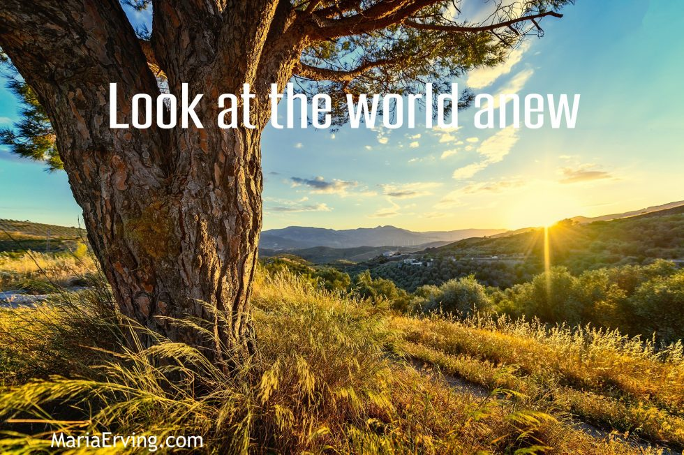 Look at the world anew