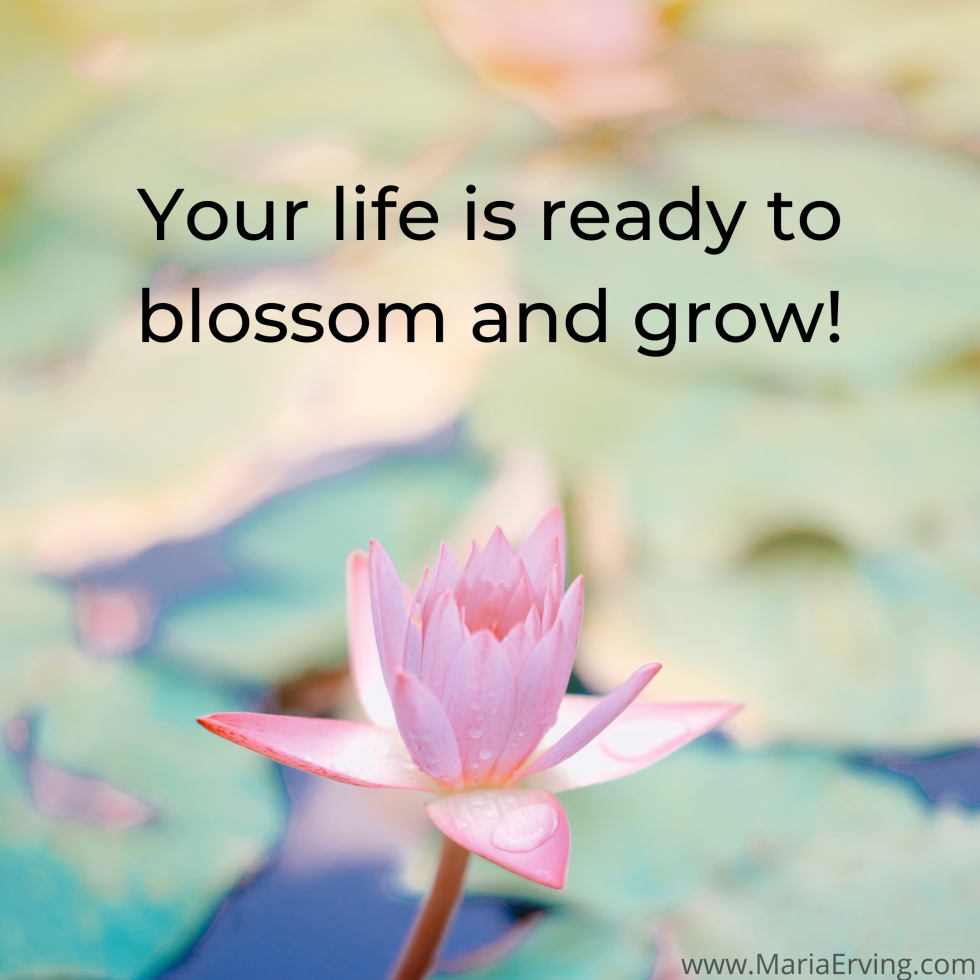 Your life is ready to blossom and grow