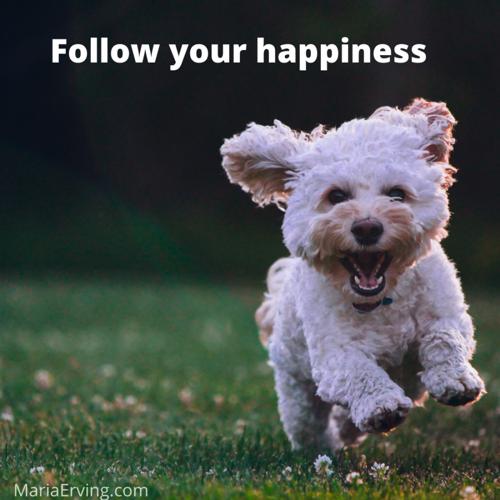 Follow your happiness, do what makes you happy